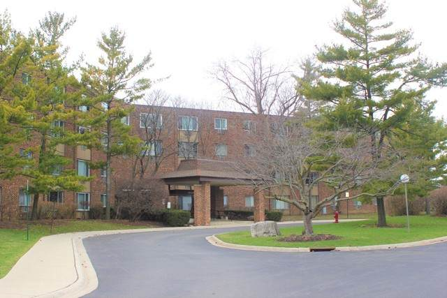 1500 Robin Circle #305, Hoffman Estates, IL 60194 (MLS #10682612) :: Property Consultants Realty