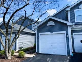 482 Mill Street #482, Batavia, IL 60510 (MLS #10683331) :: The Dena Furlow Team - Keller Williams Realty