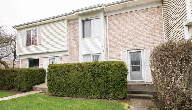 457 Mallview Lane, Bolingbrook, IL 60440 (MLS #10683373) :: The Wexler Group at Keller Williams Preferred Realty
