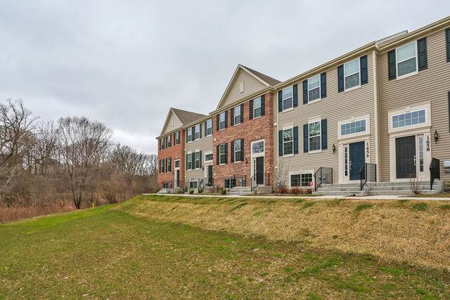 1654 Deer Point Drive, South Elgin, IL 60177 (MLS #10683653) :: Knott's Real Estate Team