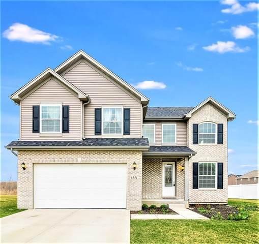 1441 S Saddlebrook Lane, Minooka, IL 60447 (MLS #10684853) :: Suburban Life Realty