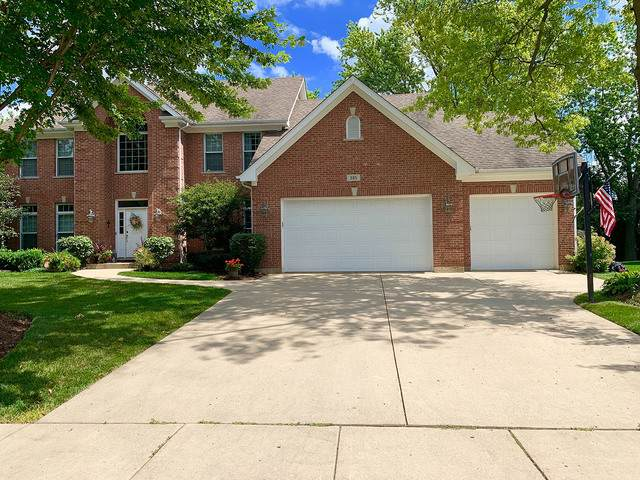 385 N Chalary Court, Palatine, IL 60067 (MLS #10685301) :: Helen Oliveri Real Estate