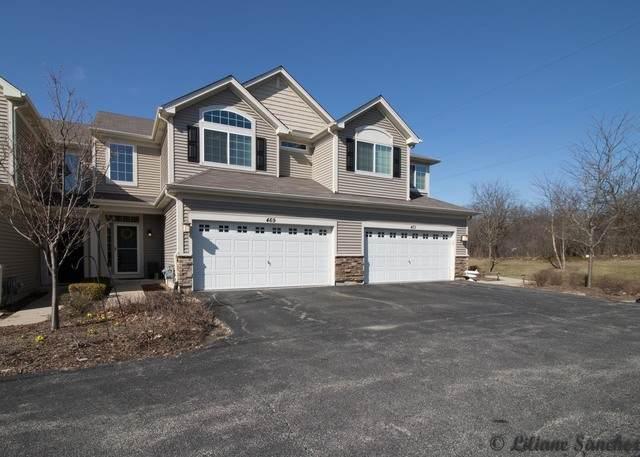 469 S Jade Lane, Round Lake, IL 60073 (MLS #10687244) :: Touchstone Group