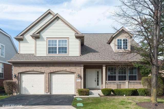 1938 Olympic Drive, Vernon Hills, IL 60061 (MLS #10690747) :: Ani Real Estate