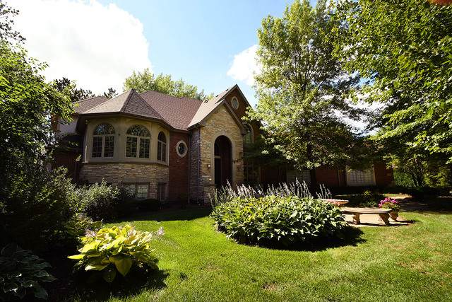 16440 S Alberta Court, Homer Glen, IL 60491 (MLS #10709246) :: Lewke Partners