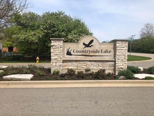 21320 W Lakeview Parkway, Mundelein, IL 60060 (MLS #10713980) :: John Lyons Real Estate