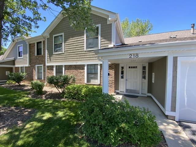 218 Hawthorne Court D2, Schaumburg, IL 60193 (MLS #10714794) :: Property Consultants Realty