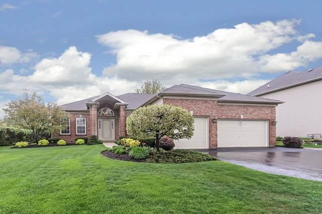 70 Glenbrook Circle, Gilberts, IL 60136 (MLS #10716546) :: Knott's Real Estate Team