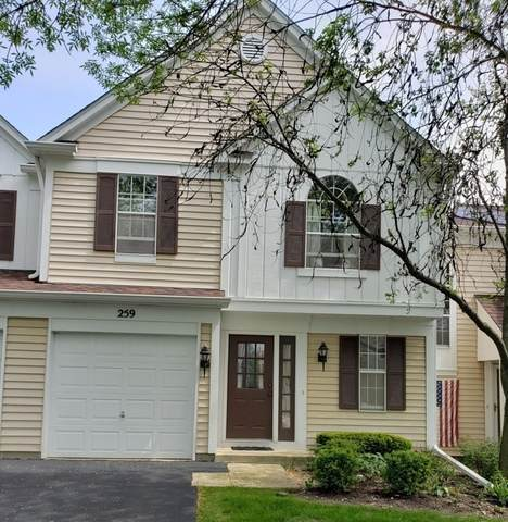 259 Half Moon Circle #259, Aurora, IL 60504 (MLS #10719341) :: Property Consultants Realty