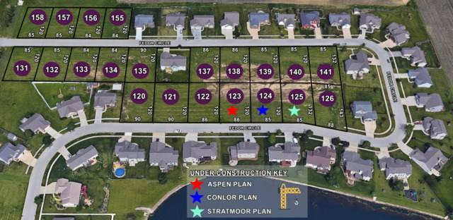 Lot 135 Fedor Circle, Bloomington, IL 61705 (MLS #10721271) :: Jacqui Miller Homes