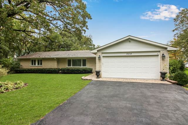 524 Bayview Court, Mchenry, IL 60051 (MLS #10721610) :: Property Consultants Realty