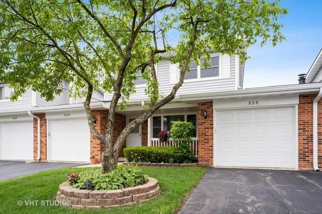 526 Wiltshire Court, Schaumburg, IL 60193 (MLS #10723518) :: Helen Oliveri Real Estate