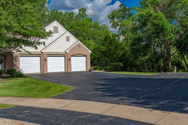 1951 Heron Avenue A, Schaumburg, IL 60193 (MLS #10724921) :: John Lyons Real Estate
