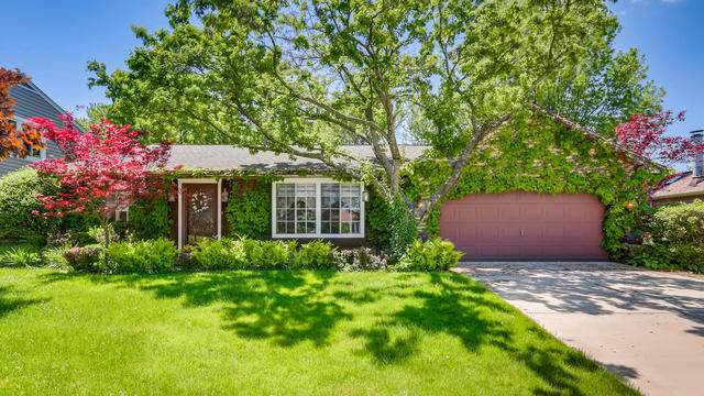 455 Harvest Lane, Roselle, IL 60172 (MLS #10729359) :: Ani Real Estate