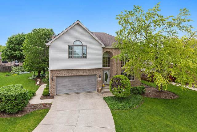 1205 Ryehill Court, Joliet, IL 60431 (MLS #10729578) :: The Wexler Group at Keller Williams Preferred Realty