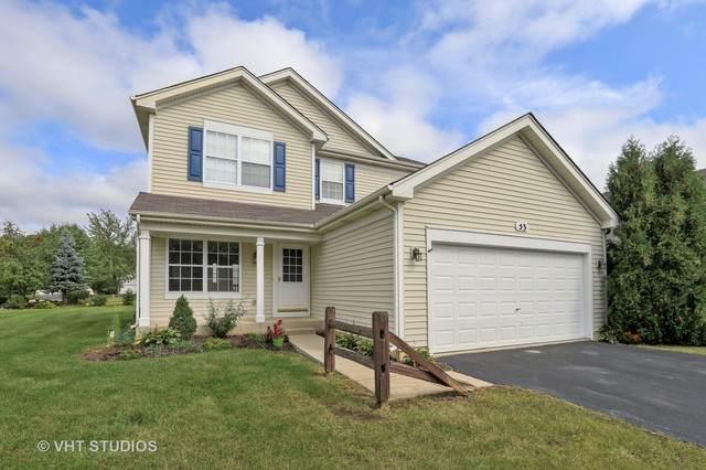 53 W Hague Drive, Antioch, IL 60002 (MLS #10730878) :: Suburban Life Realty