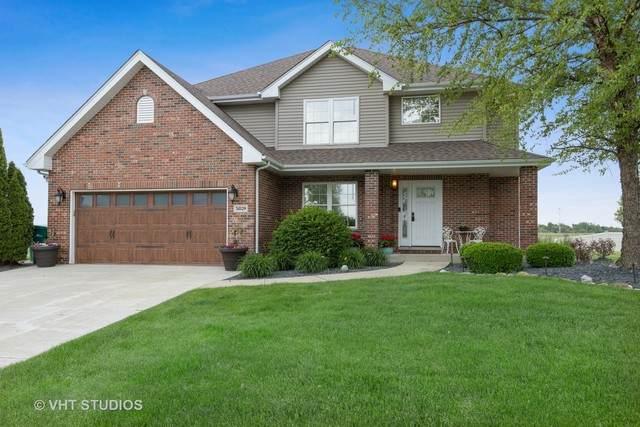 31029 Sea Sprite Drive, Wilmington, IL 60481 (MLS #10732129) :: Helen Oliveri Real Estate