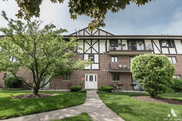 11021 S Theresa Circle 1C, Palos Hills, IL 60465 (MLS #10735911) :: Helen Oliveri Real Estate