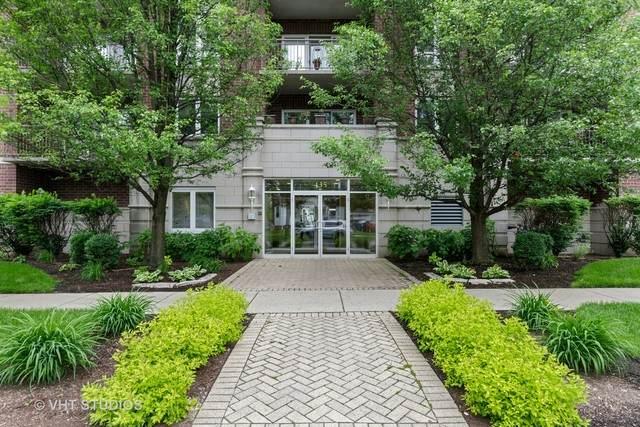 435 Alles Street #205, Des Plaines, IL 60016 (MLS #10736644) :: Helen Oliveri Real Estate