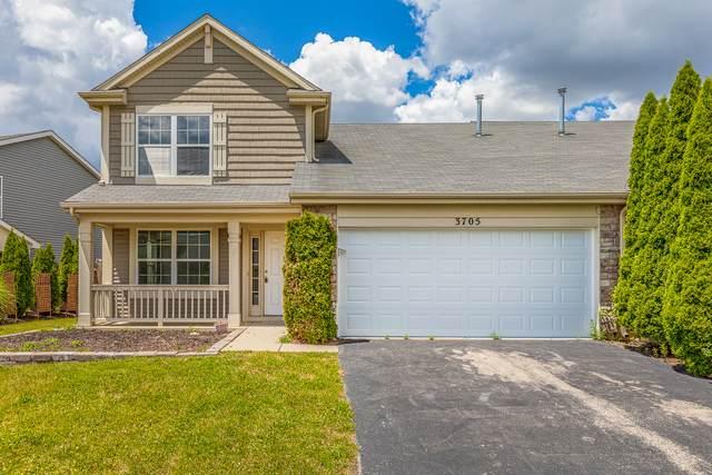 3705 Mustang Road, Joliet, IL 60435 (MLS #10758341) :: Littlefield Group