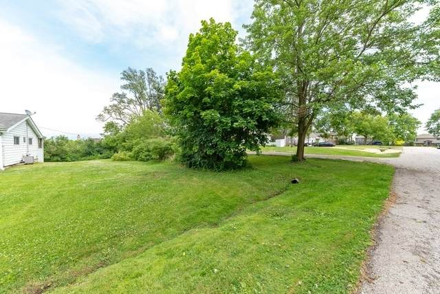 28637 N Harrison Avenue, Wauconda, IL 60084 (MLS #10758675) :: Property Consultants Realty