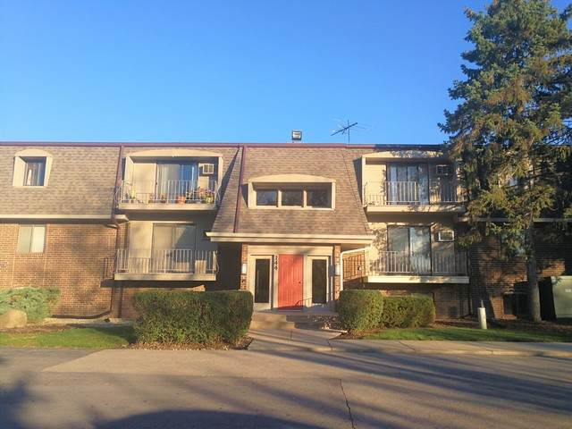 144 E Bailey Road C, Naperville, IL 60565 (MLS #10761703) :: Property Consultants Realty