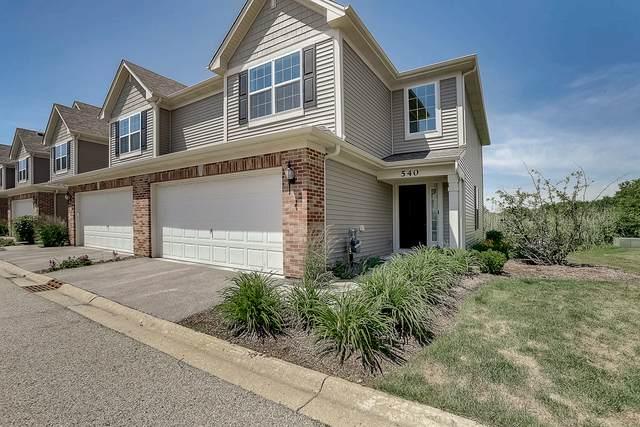 540 Silverton Drive, Grayslake, IL 60030 (MLS #10763648) :: Property Consultants Realty