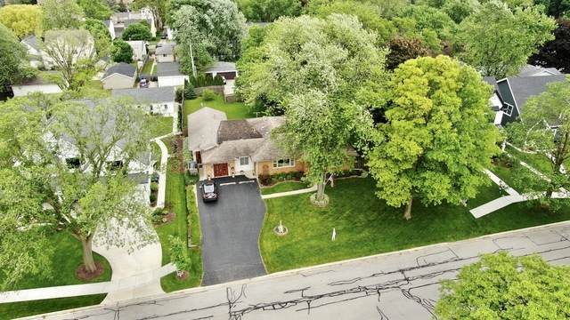 636 S Webster Street, Naperville, IL 60540 (MLS #10763979) :: Property Consultants Realty