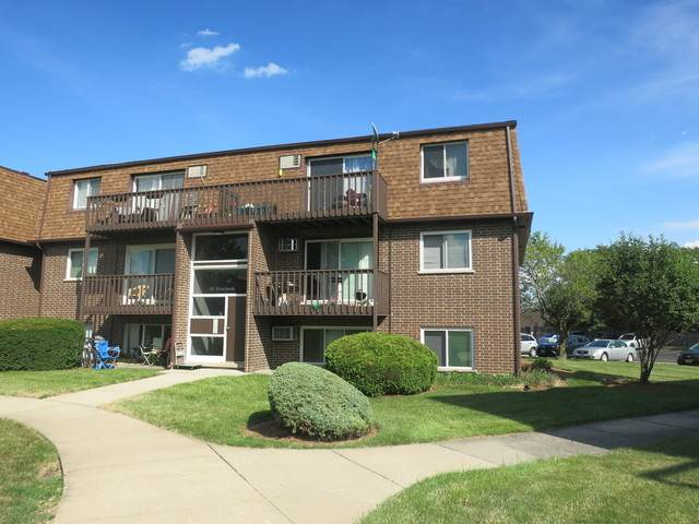 116 Boardwalk Street 2W, Elk Grove Village, IL 60007 (MLS #10765922) :: John Lyons Real Estate