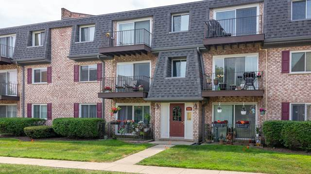920 S Plum Grove Road #225, Palatine, IL 60067 (MLS #10767567) :: The Wexler Group at Keller Williams Preferred Realty