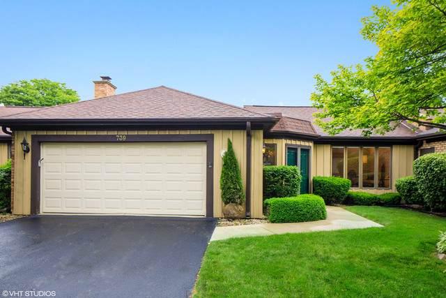 739 Tomlin Drive C-5, Burr Ridge, IL 60527 (MLS #10767911) :: Knott's Real Estate Team