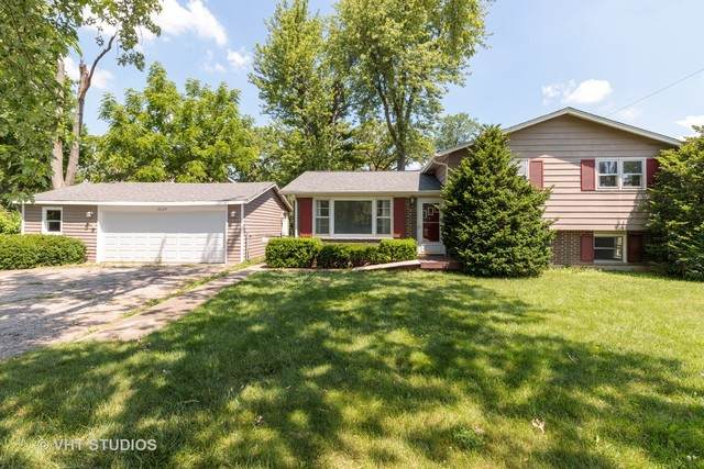 18634 W Deerpath Road, Grayslake, IL 60030 (MLS #10769720) :: Property Consultants Realty