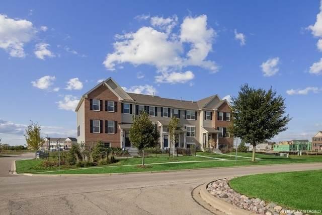 289 Lakeshore Drive, Oswego, IL 60543 (MLS #10770167) :: Touchstone Group