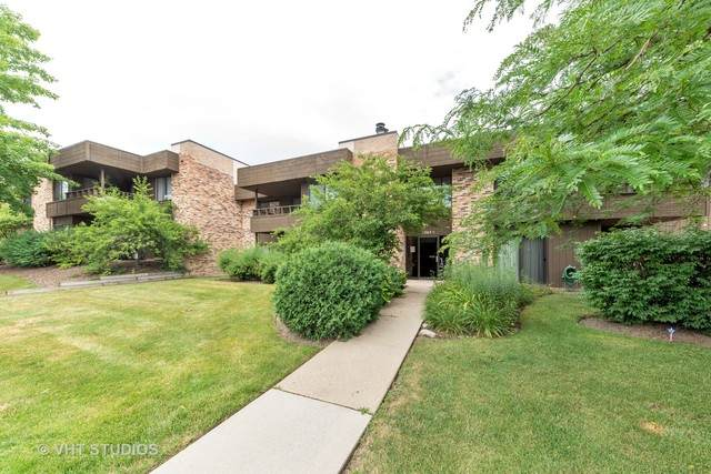 1365 N Sterling Avenue #110, Palatine, IL 60067 (MLS #10770313) :: Suburban Life Realty