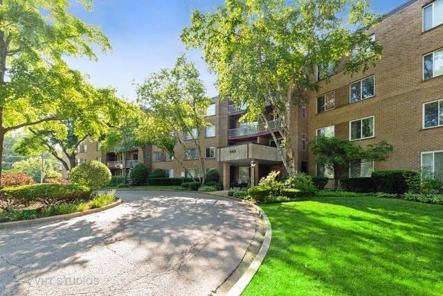 945 E Kenilworth Avenue #127, Palatine, IL 60074 (MLS #10770891) :: Touchstone Group