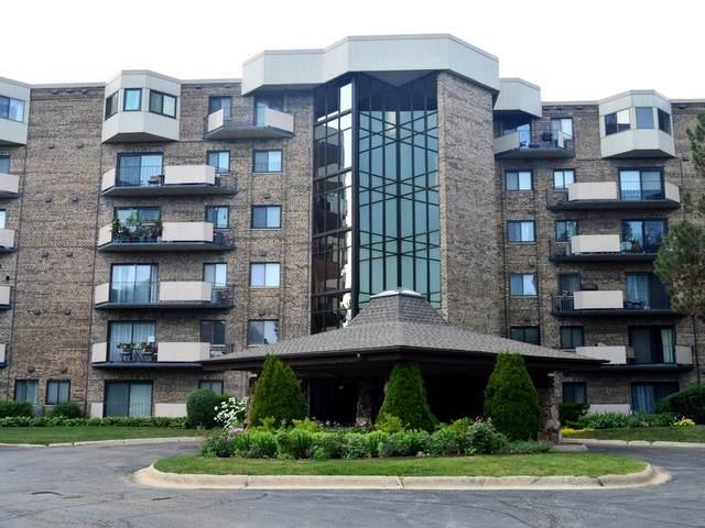 1243 E Baldwin Lane #303, Palatine, IL 60074 (MLS #10772487) :: John Lyons Real Estate