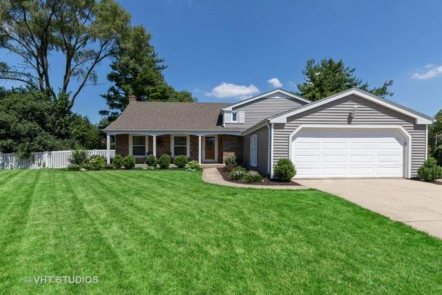 1131 Jamestown Court, Schaumburg, IL 60193 (MLS #10773095) :: Angela Walker Homes Real Estate Group