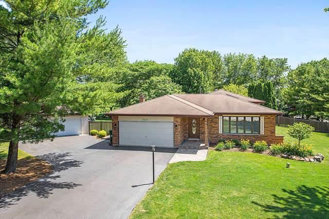 17639 S Mccarron Road, Homer Glen, IL 60491 (MLS #10775232) :: Property Consultants Realty