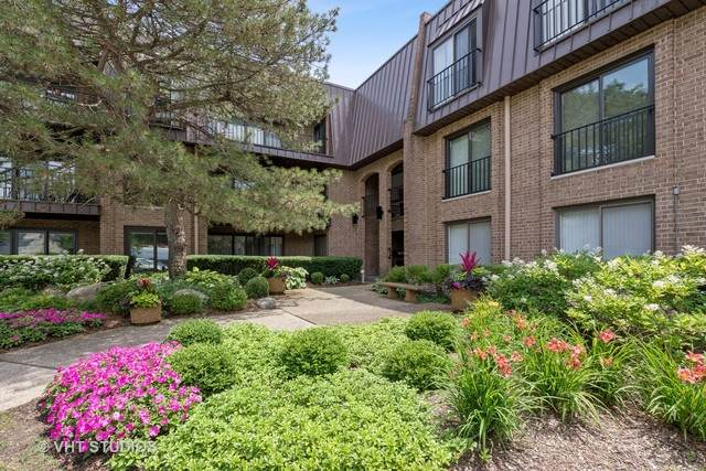 1 The Court Of Harborside #205, Northbrook, IL 60062 (MLS #10785700) :: John Lyons Real Estate