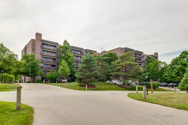 920 Vose Drive #103, Gurnee, IL 60031 (MLS #10795913) :: Property Consultants Realty