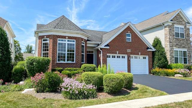 3839 Valhalla Drive, Elgin, IL 60124 (MLS #10800792) :: John Lyons Real Estate