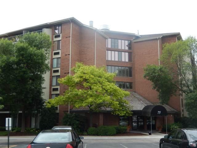 75 Kristin Circle #425, Schaumburg, IL 60195 (MLS #10802524) :: Angela Walker Homes Real Estate Group