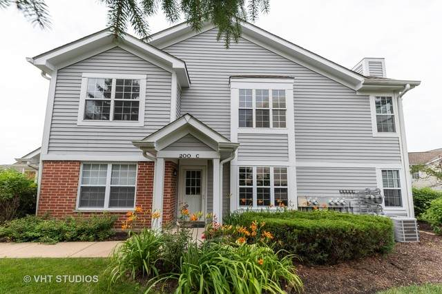 200 Chesterfield Court C, Schaumburg, IL 60193 (MLS #10802888) :: The Wexler Group at Keller Williams Preferred Realty