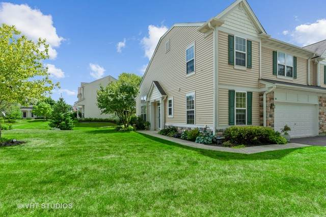 210 Terra Springs Circle, Volo, IL 60020 (MLS #10803541) :: Littlefield Group