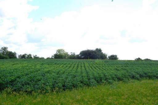 7690 Seeman Road, Huntley, IL 60142 (MLS #10806002) :: Littlefield Group