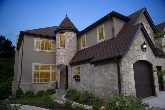 810 Leona Mae Court, Naperville, IL 60563 (MLS #10806069) :: John Lyons Real Estate