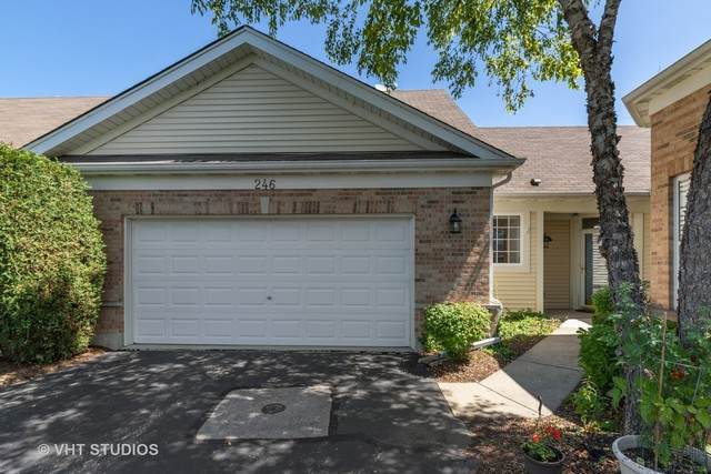 246 Enfield Lane, Grayslake, IL 60030 (MLS #10809114) :: John Lyons Real Estate