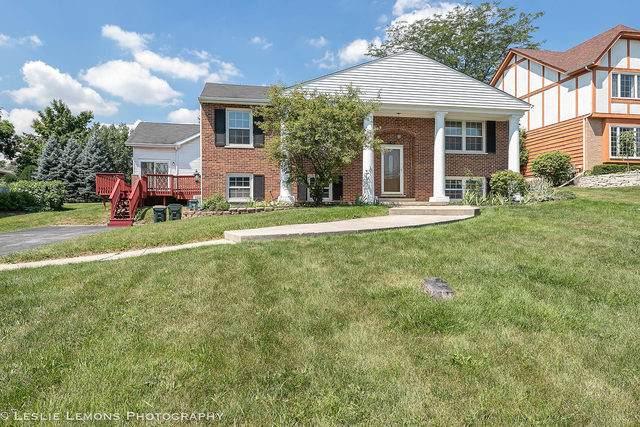 8424 Walredon Avenue, Burr Ridge, IL 60527 (MLS #10810001) :: The Wexler Group at Keller Williams Preferred Realty