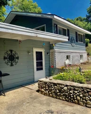 42 Riverview Avenue, Fox Lake, IL 60020 (MLS #10810965) :: Touchstone Group