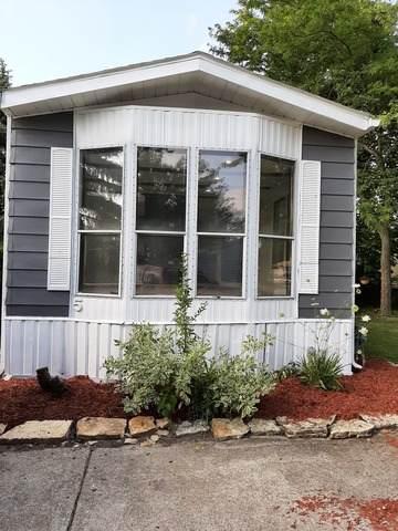 56 Brushwood Drive, Matteson, IL 60443 (MLS #10811672) :: John Lyons Real Estate